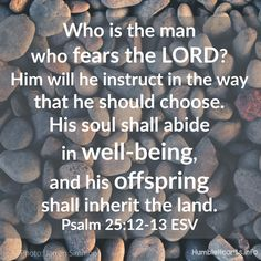 I loved reading Psalm 25 this morning. It lays forth such a beautiful heart to desire living our lives with God and wanting to do His Wo. Scripture Quotes, Bible Verses, Prayer For Studying, Good Scriptures, Psalm 50, Humble Heart, Fear Of The Lord, Christian Parenting, Christian Life