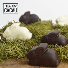 Bombons da Páscoa com recheio de limão info@pedacosdecacau.pt Chocolate, Cocoa, Chocolates, Brown