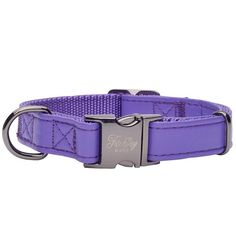 Valentina in Gunmetal Designer Dog Collars, Pet Tags, Dog Harness, Clothing Items, Fur Babies, Buy Now, Two By Two, Stylish, Leather