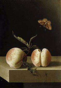 Adriaen Coorte (c.1693-95) 'Still life with two peaches and a butterfly' paper on panel, Royal Picture Gallery, Mauritshuis  Adriaen Coorte [Dutch Golden Age painter, ca.1660-1707]
