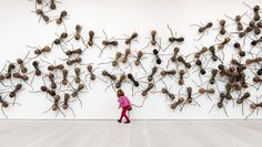 Pangaea: New Art From Africa And Latin America - Saatchi Gallery