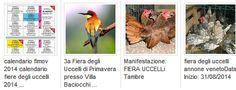 calendario fiere degli uccelli fimov confu