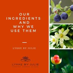 Every Wednesday we'll be sharing information about our ingredients - please share with your friends that you know appreciate this information and let us know what you think about it! Love from Lykke by Julie