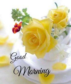 Good Morning Sunday Images, Good Morning Beautiful Pictures, Good Morning Beautiful Flowers, Good Morning Nature, Good Morning Msg, Good Morning Images Flowers, Good Morning Inspiration, Good Morning World, Good Morning Greetings
