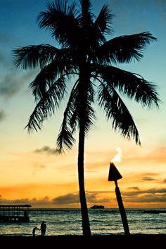 Waikiki Sunset | Your Perfect Hawaii Escape! View Deals!