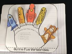 Gimme Five - Classifying vertebrate animal activity for interactive notebooks