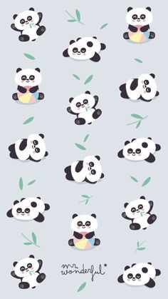 62 Ideas For Wallpaper Celular Whatsapp Panda Panda Wallpaper Iphone, Cute Panda Wallpaper, Panda Wallpapers, Kawaii Wallpaper, Animal Wallpaper, Aztec Wallpaper, Pink Wallpaper, Iphone Wallpapers, Niedlicher Panda