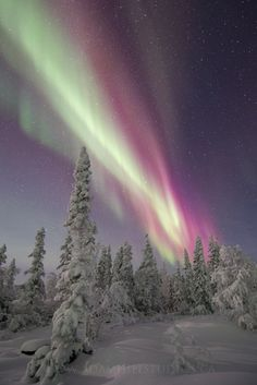 Red Christmas Aurora by Adam Hill on 500px