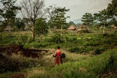 Vinales, New York Times Magazine, Climate Change Effects, San Salvador, Central America, Ecology, Continents, Geography, Mexico