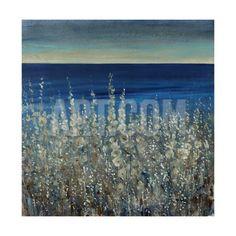 https://imgc.artprintimages.com/img/print/print/tim-o-toole-shoreline-flowers-ii_a-l-10824885-4986958.jpg?w=550&h=550