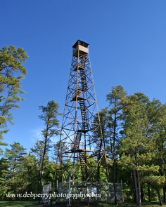 Allegany State Park Fire Tower...looks just like the one down the road from our house in SC