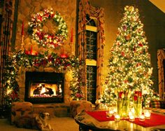 http://www.designbolts.com/wp-content/uploads/2013/12/Christmas_Tree_Images-2013-2.jpg