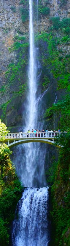 Multnomah Falls Waterfall in Bridal Veil, United States of America Multnomah Falls is a waterfall on the Oregon side of the Columbia River Gorge, located east of Troutd