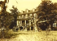 Plantation - McClellanville, Charleston and Georgetown Counties, South ...