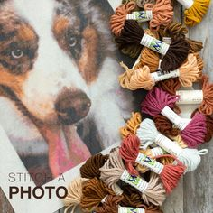 Try designing a #needlepointcanvas using your own photo for free! Photo 📸 canvas Needlepoint Kits are one of the most popular themes at NeedlePaint.  Important notes for creating a canvas from a photo using our website tool:  👉 #1. Photo image size should be at least 250 pixels x 250 pixels for a 10″ x 10″ canvas.  👉 #2. Images with a contrasting background tend to look better.  👉 #3. Dogs with contrasting markings really look great! Needlepoint Belts, Needlepoint Canvases, Custom Canvas, Key Fobs, Photo Canvas, Burlap Wreath, Create Your Own, Notes, Popular