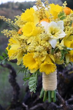 bella fiori - yellow bouquet of acacia, daffodils and ranunculus- this is beautiful!
