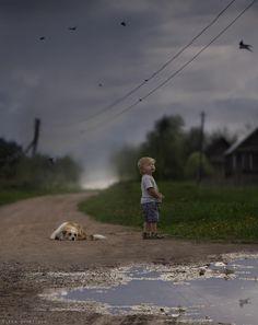 Swallows .... - by Elena Shumilova, Russian