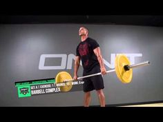 Full Body Animal Strength Workout - YouTube