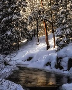 Guide On How To Effectively Take Better Photos. Just because you have developed an interest in taking pictures doesn't mean you can take good pictures. Winter Szenen, Winter Love, Winter Magic, Winter Photography, Nature Photography, Wow Art, Snow Scenes, Take Better Photos, All Nature