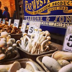 Far West Fungi @ San Francisco Ferry Building.  A whole shop just for shrooms, how cool is that?