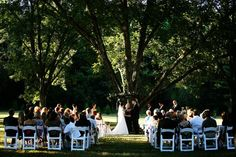 wedding in our pecan orchard