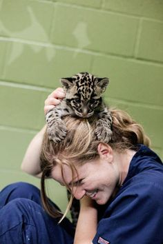 Point Defiance Zoo--See keepers interact with the cubs at 9:45am and 1:45pm at the Zoo's Cub Den. Watch Kali the endangered Sumatran tiger cub and Tien the endangered Clouded leopard cub play with each other for a half-hour at the times listed above.