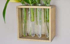 Make a gorgeous wall hung vase test tube vase with a tutorial at Dream a Little Bigger. Lillies Tattoo, Wall Vases, Diy Projects To Try, A Table, Tube, Plant, Diy Crafts, Spaces, Living Room