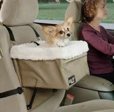These are dog Products that we believe is Special and worth inclusion within this dog accessories category...