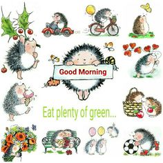 Good morning. Eat plenty of green