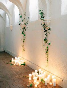 botanical vine wall