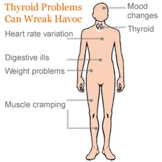 Symptoms of Thyroid Problems - Thyroid Problems in Women - RealAge