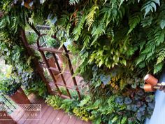 Green-wall-garden-design Garden On A Hill, Garden Club, Terrace Garden, Garden Bridge, Urban Garden Design, London Clubs, Outdoor Chairs, Outdoor Decor, Notting Hill