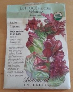 What better way to get a variety, then to use a variety seed pack.  See what types of lettuce to grow.