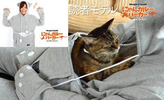 Sweatshirt that gives your pet a special cuddle pouch