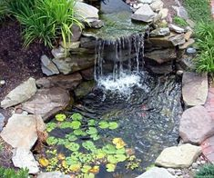 DIY BackYard Turtle Pond Designs Ideas 36