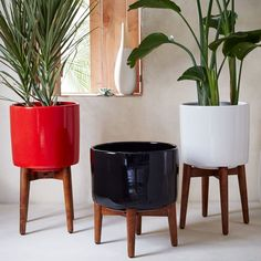 Ana White | Build a West Elm Inspired Plant Stand Featuring Tiny Sidekick | Free and Easy DIY Project and Furniture Plans