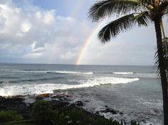 Kuhio Shores Condos @Trish Reeves check out these condos in Kauai!!