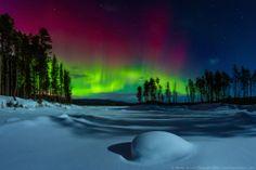 Blazing Aurora