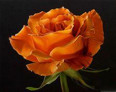 ~~ Jane Willis Taylor, Berlin Rose ~~