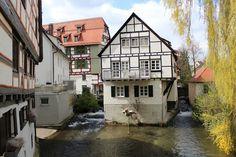 fisher quarter in Ulm