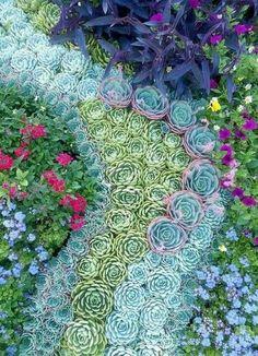 Succulent wall garden. Beautiful like a piece of living art!