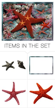 """Not all Stars are in the Sky!"" by ragnh-mjos ❤ liked on Polyvore featuring art, water, Starfish and seastar"