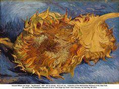 Vincent Willem van Gogh - Sunflowers