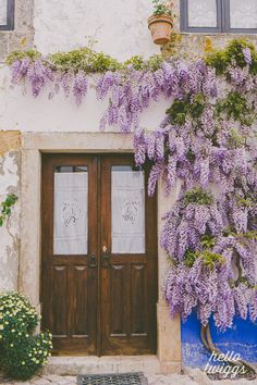 Travel Photography Door Print Wisteria Photograph by hellotwiggs