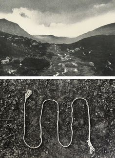 Hamish Fulton - From point to walking