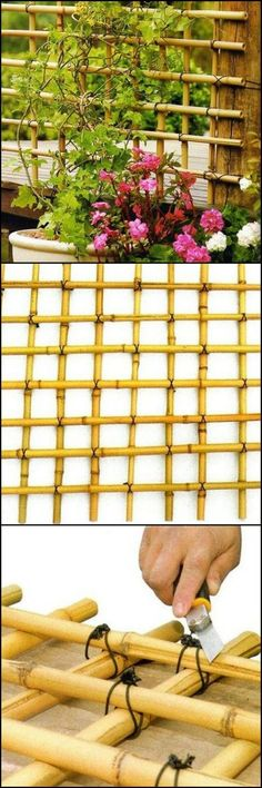 How To Build A Trellis From Bamboo theownerbuilderne. If there's a handmade trellis that perfectly fits any garden, this would be it. Why not make a trellis using bamboo! Diy Bamboo, Bamboo Trellis, Diy Trellis, Bamboo Crafts, Bamboo Fence, Garden Trellis, Bamboo Ideas, Cheap Trellis, Trellis Ideas