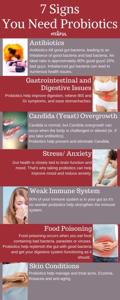 Holistic Health Remedies 7 Signs You Need Probiotics Gut Health, Health And Nutrition, Health And Wellness, Health Tips, Health Fitness, Health Recipes, Colon Health, Health Matters, Good Gut Bacteria