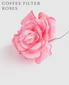 Niki of Papery & Cakery shares this beautiful DIY craft with Honest to Nod for how to make delicate coffee filter roses that look just like the real thing!