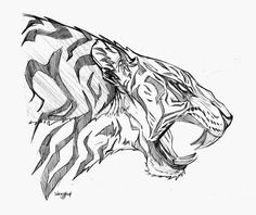 Drawn white tiger roar - pin to your gallery. Explore what was found for the drawn white tiger roar Turtle Sketch, Tiger Sketch, Tiger Illustration, Moon Sketches, Drawing Sketches, 3d Sketch, Angel Drawing, Cat Drawing, Animal Sketches