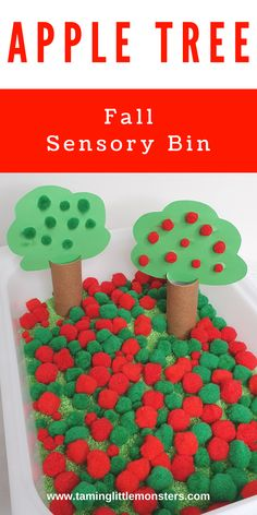 Learn how to make an Apple tree sensory bin. This is a fun and easy sensory activity for Fall and Autumn. Toddlers, preschoolers and kindergarten will love this beautiful fall play idea. #Fall #autumn #sensory #toddlers #prescholers #kindergartners Fall Sensory Bin, Sensory Bins, Sensory Activities, Toddler Activities, Preschool Classroom, Kindergarten, Autumn Activities For Kids, Apple Tree, Autumn Theme